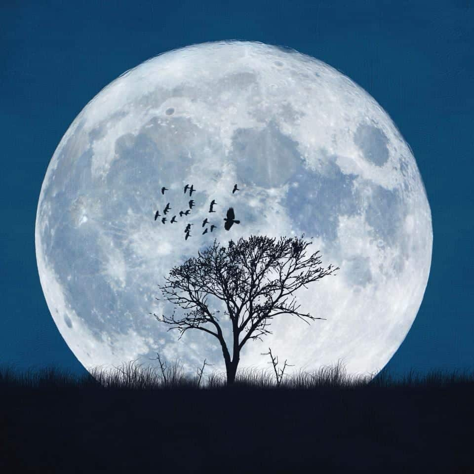 lunar-phase-when-the-moon-is-totally-illuminated