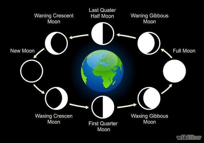 8-Phases-of-the-moon-in-order