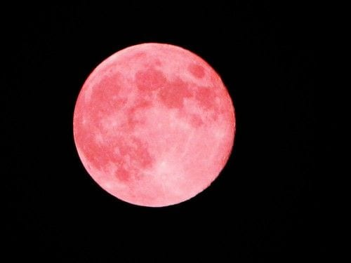 full-moon-in-april-2021-pink-moon