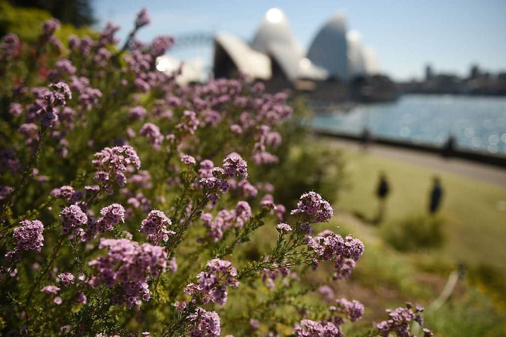 first-day-of-spring-in-australia