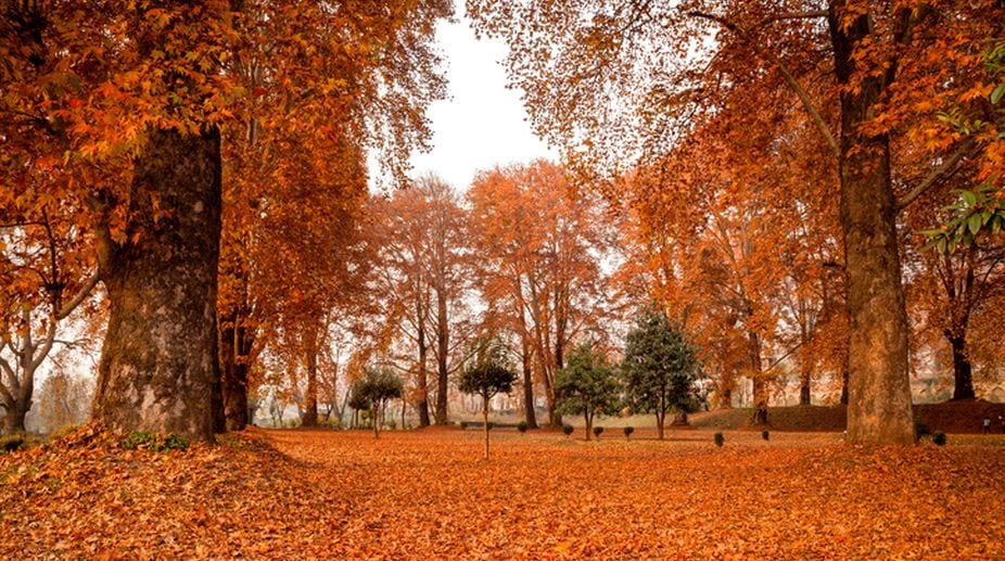 first-day-of-fall-in-northern-hemisphere
