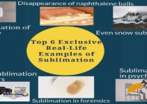 Top 6 Exclusive Sublimation Examples in Daily Life